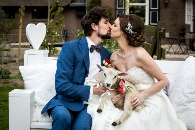 bruidspaar kus lammetje