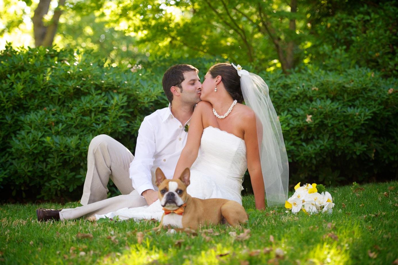 Идеи для свадебной фотосессии летом на природе фото 3