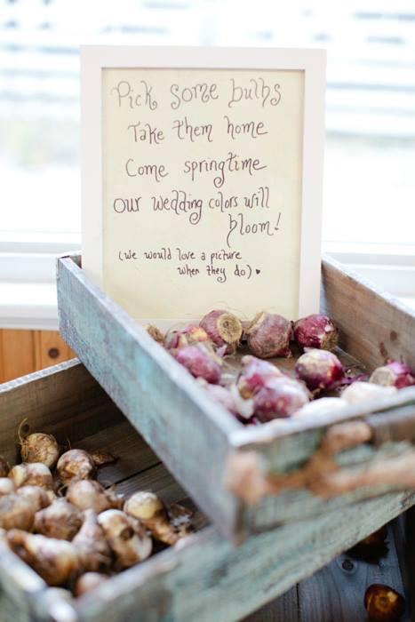 bloembollen bedankje trouwdag