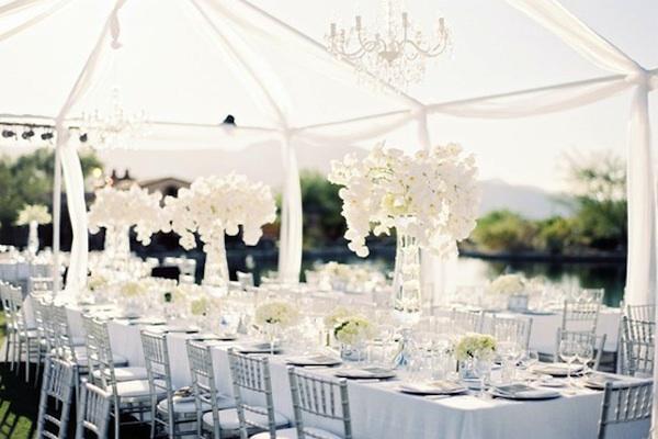 bruiloft-tent-wit